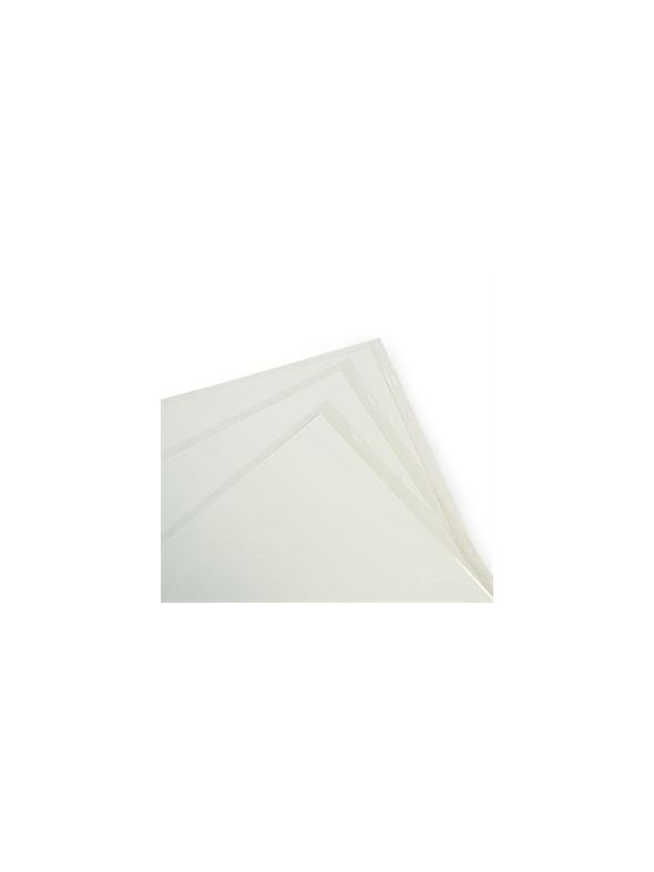 12 x 12 Top-loading Sleeves