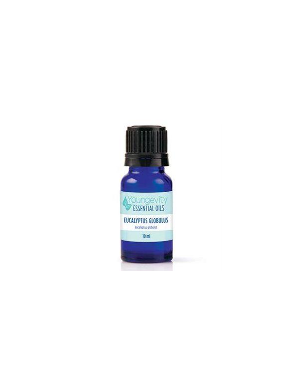 Eucalyptus Globulus Essential Oil - 10ml